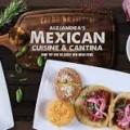 Alejandras-Mexican-Restaurant-and-Cantina__FillMaxWzEyMCwxMjBd